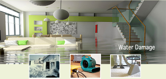 water damage arlington alexandria va