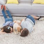 Carpet Cleaning Fairfax VA Arlington Rug Care Services Northern VA