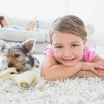 Carpet Cleaning Fairfax VA Northern Virginia Rugs reliable