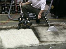 Carpet Cleaning in Northern VA